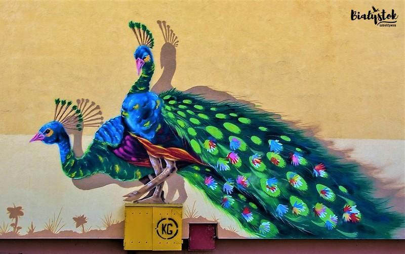 Białostockie murale
